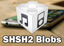 save shsh2 blobs