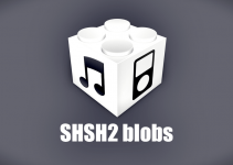 shsh2 blobs