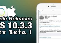 ios 10.3.3 beta 1 download
